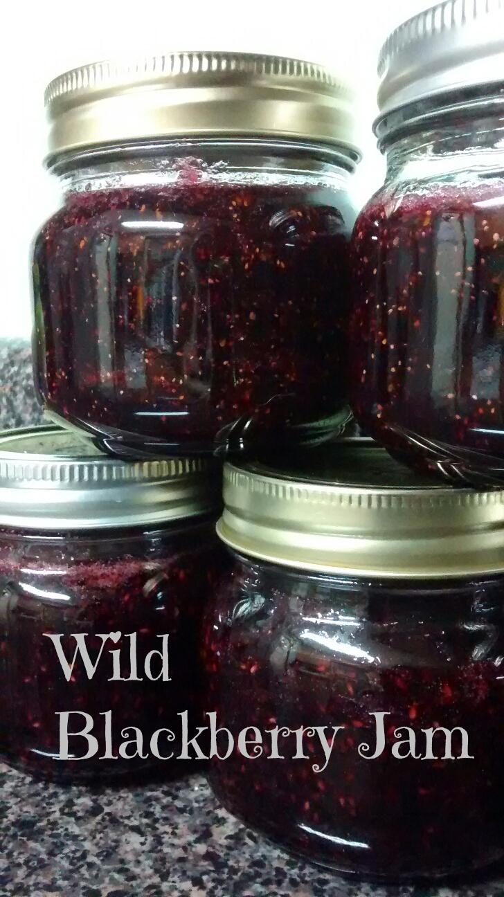 Easy Wild Blackberry Jam Pectin Free Homestead Heroine